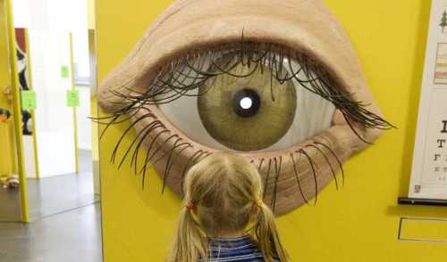 Hygiene Museum Dresden: girl fascinated by a large-format illustration of the human eye